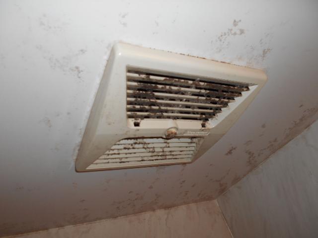 浴室換気扇の清掃前