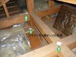天井裏ホウ酸ダンゴ設置クロゴキブリ対策