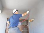 玄関のクモ対策