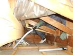 屋根裏の清掃2