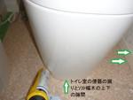 トイレ内のトビムシ対策