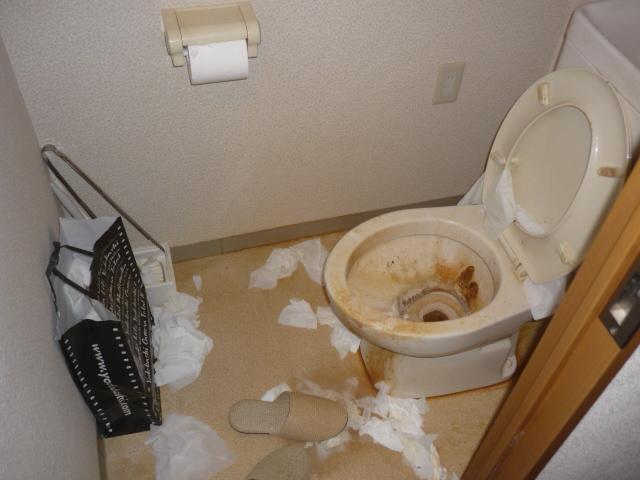 孤独死後のトイレ清掃1