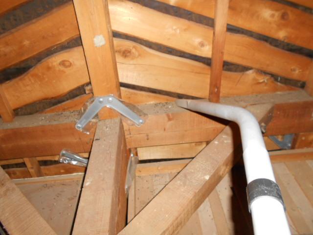 屋根裏コウモリ糞清掃