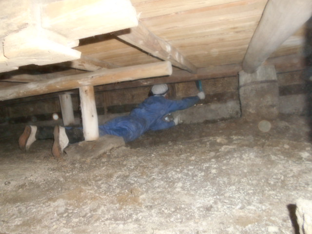 床下のゴキブリ卵除去清掃
