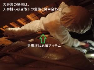 01コウモリ防除はコウモリ専門業者に依頼④