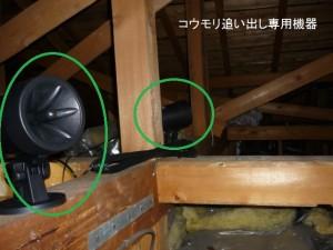 03コウモリ対策工事手順②