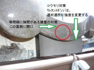 03コウモリ対策工事手順③