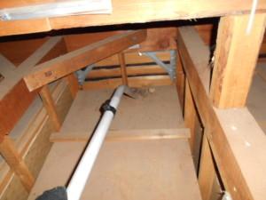 屋根裏コウモリ糞清掃2