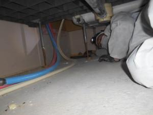 床下のネズミ毒エサ清掃