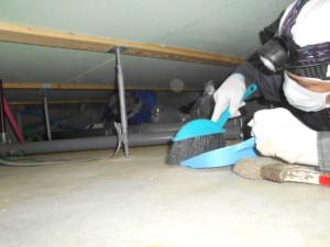床下清掃の様子1