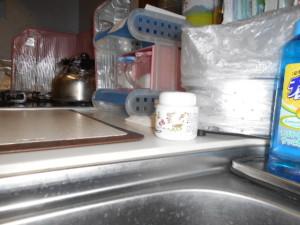 ゴキブリとコバエを寄せ付けないデサピア台所
