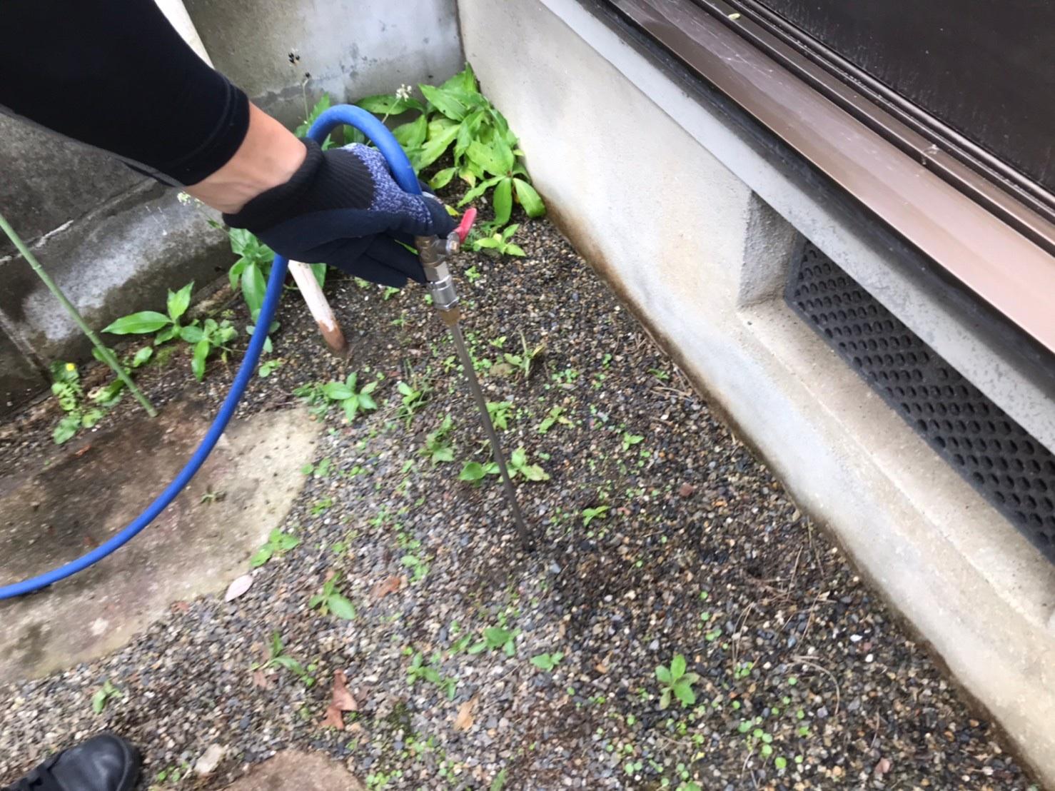 滋賀県アリ駆除、庭の土壌処理剤注入