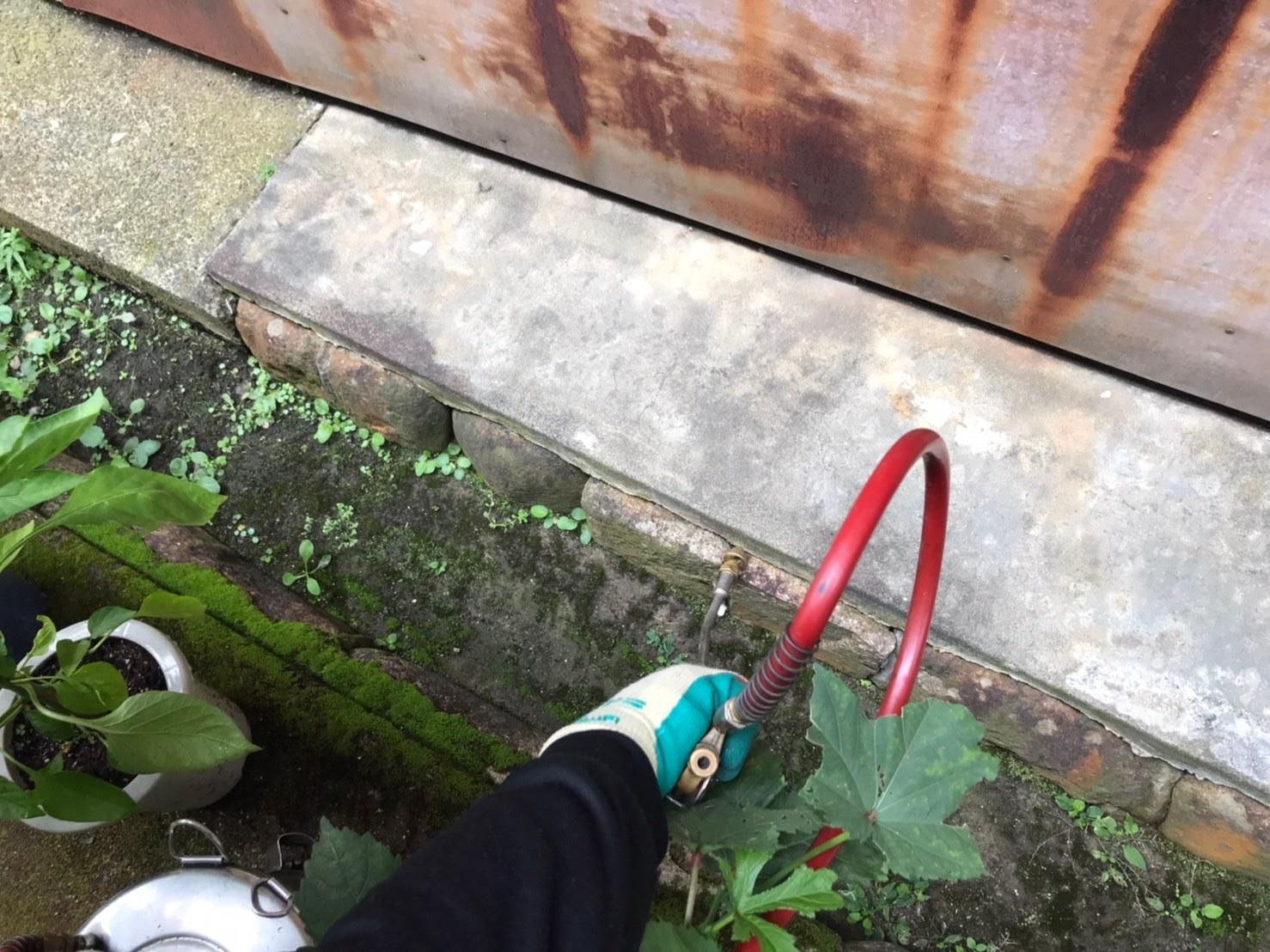 東近江市アリ駆除、不快害虫用薬剤トラスト注入