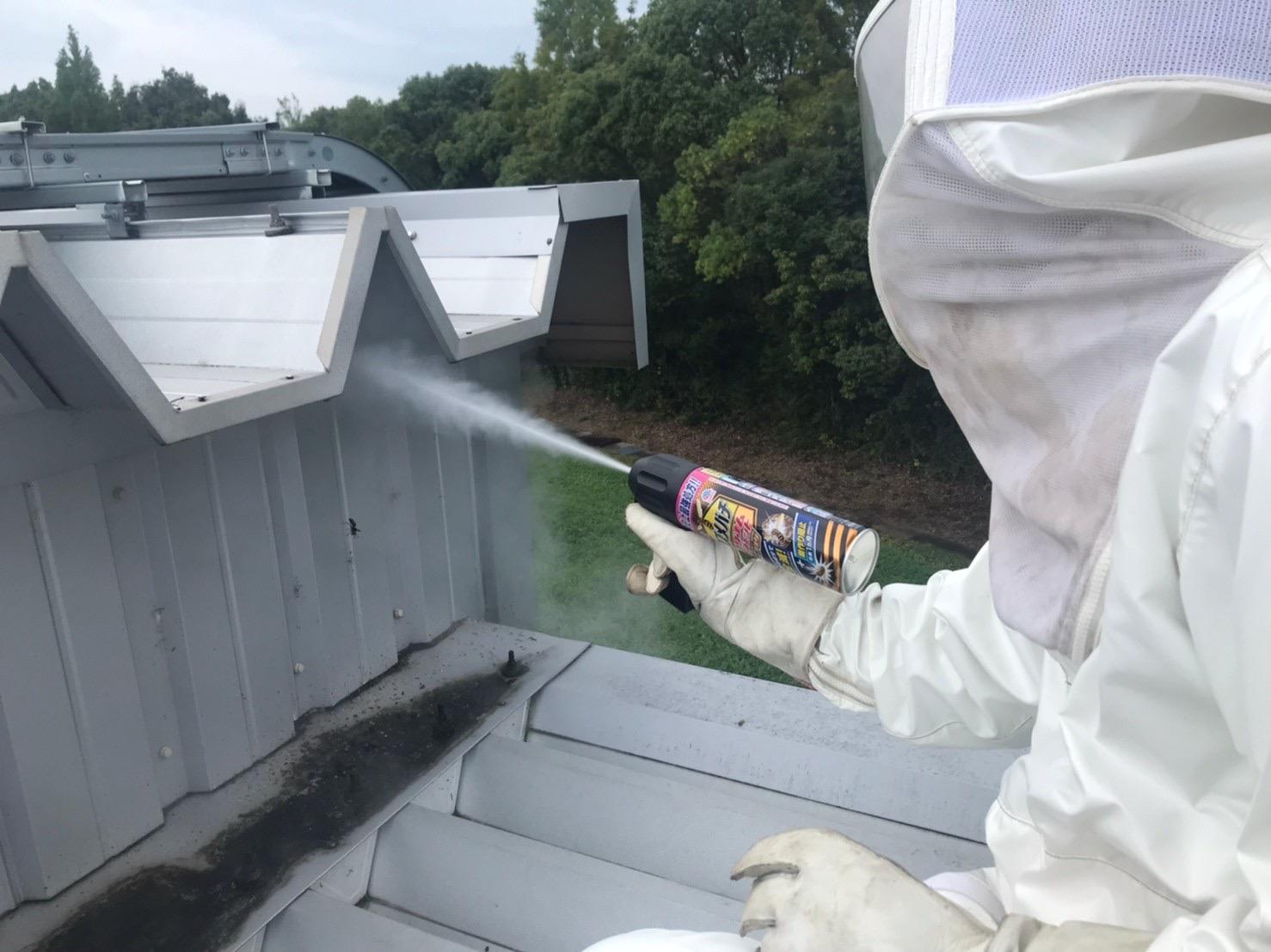 滋賀県大津市のスズメバチ駆除